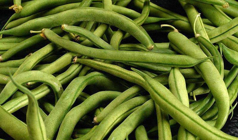Консервированная фасоль: польза и вред, калорийность