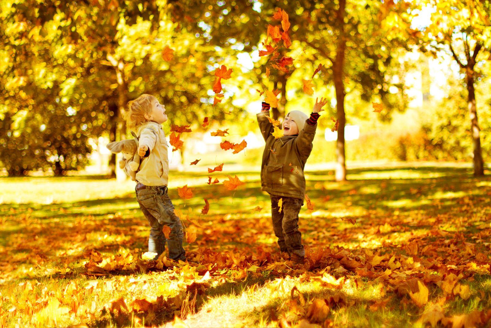 Картинки, картинки дети осенью играют
